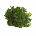 Australian Parsley8295.jpg