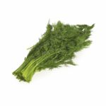 Dill Seedlingcommerce © 2018 8037.jpg