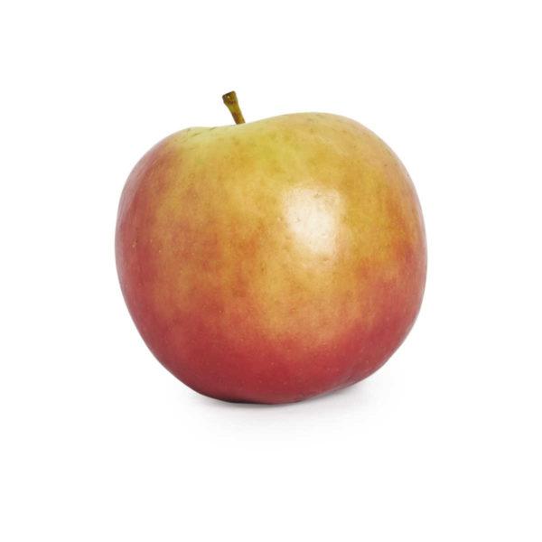 apple fuji © seedling commerce.jpg