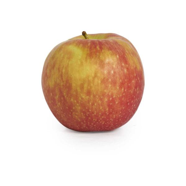 apple pink lady 2018 © seedling commerce..jpg
