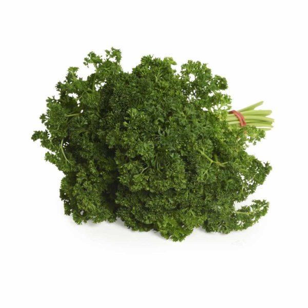 australian parsley8295.jpg