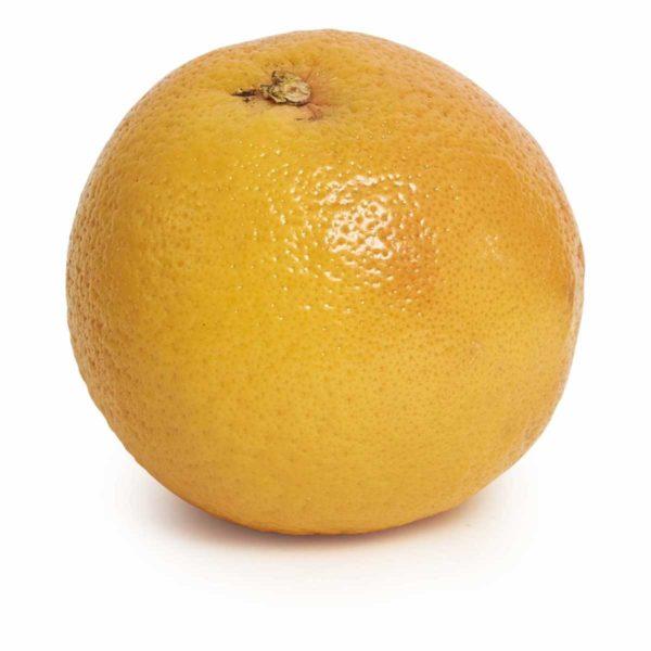 blood orange seedlingcommerce © 2018 8042.jpg