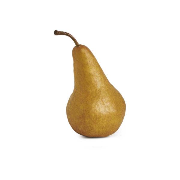 brown pear 2018 © seedling commerce.jpg