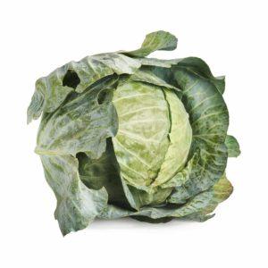 cabbage 2018 © seedling commerce.jpg