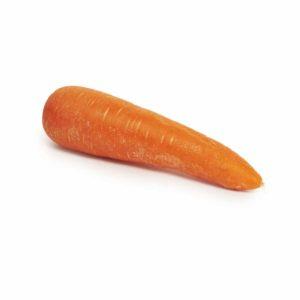 carrot seedlingcommerce © 2018 8073.jpg