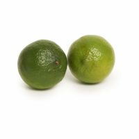limes seedlingcommerce © 2018 8044.jpg