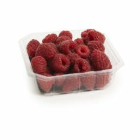 raspberries seedlingcommerce © 2018 8265.jpg