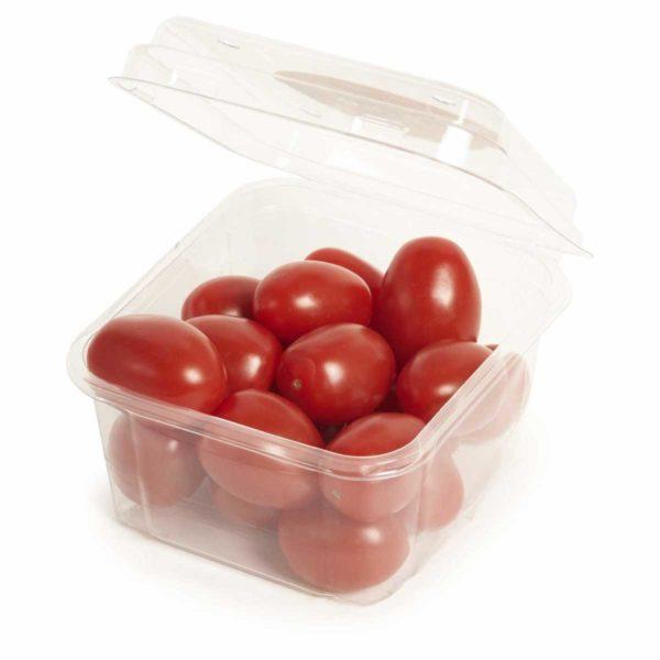 roma cherry tomato punnet seedlingcommerce © 2018 8158.jpg