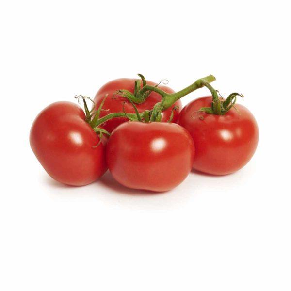 tuss tomatoes seedlingcommerce © 2018 8170.jpg